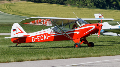 D-ECAI - Piper L-18C Super Cub - Private
