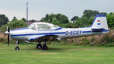 D-ECOY - Piaggio P-149D - Private
