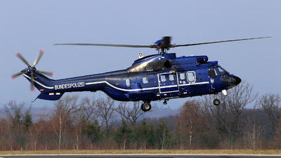 D-HEGD - Eurocopter AS 332L Super Puma - Germany - Bundespolizei