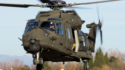 MM81529 - NH Industries NH-90TTH - Italy - Army