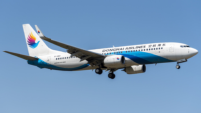 B-1462 - Boeing 737-83Z - Donghai Airlines