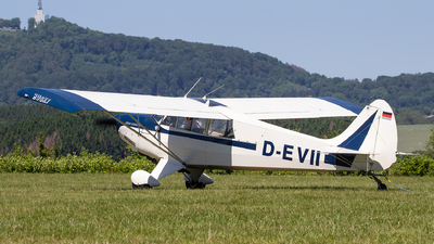 D-EVII - Aviat A-1A Husky - Private
