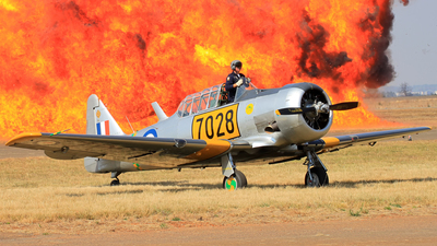 ZU-AOP - North American AT-6C Texan - Harvard Club of South Africa