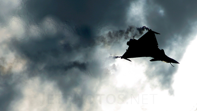 113 - Dassault Rafale B - France - Air Force