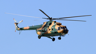 704 - Mil Mi-17 Hip - Hungary - Air Force