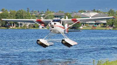 A picture of N29SR - Cessna A185F Skywagon - [18503582] - © Mirko Bleuer