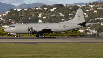NZ4204 - Lockheed P-3K Orion - New Zealand - Royal New Zealand Air Force (RNZAF)