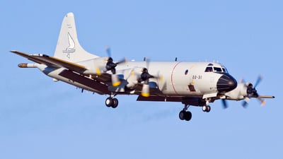 P.3M-08 - Lockheed P-3B Orion - Spain - Air Force