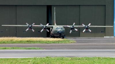 A-1304 - Lockheed C-130B Hercules - Indonesia - Air Force