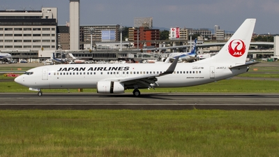 A picture of JA307J - Boeing 737846 - Japan Airlines - © MAYAH Liner