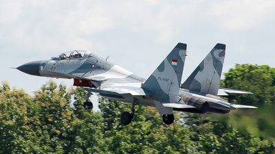 TS-3007 - Sukhoi Su-30MK2 - Indonesia - Air Force