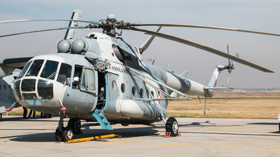 1719 - Mil Mi-17 Hip - Mexico - Air Force