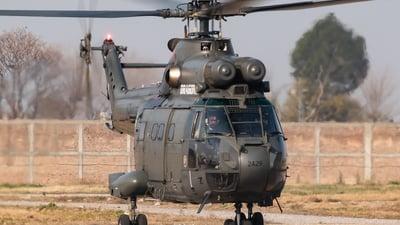 2429 - IAR-330L Puma - Pakistan - Army Aviation