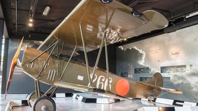 266 - Fokker D.VII - Netherlands - Royal Air Force