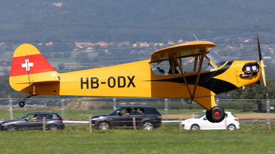 HB-ODX - Piper L-4H Cub - Private