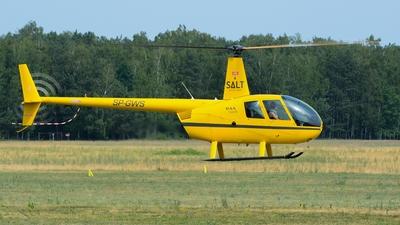 SP-GWS - Robinson R44 Raven II - Private