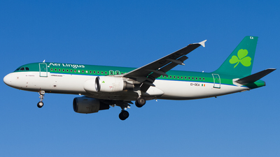 A picture of EIDEA - Airbus A320214 - Aer Lingus - © Tim Lowe