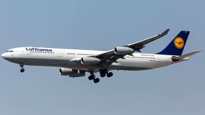 D-AIGT - Airbus A340-313X - Lufthansa