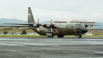 A-1317 - Lockheed C-130H Hercules - Indonesia - Air Force