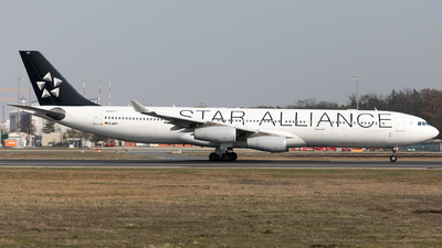 D-AIFF - Airbus A340-313X - Lufthansa CityLine