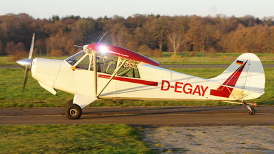 D-EGAY - Christen A-1 Husky - Private