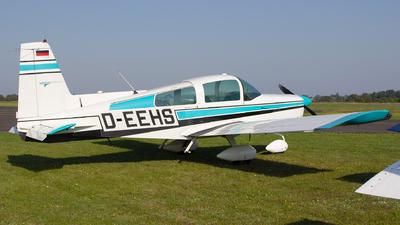 D-EEHS - Grumman American AA-5 Traveler - Private