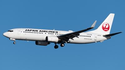 A picture of JA319J - Boeing 737846 - Japan Airlines - © Yoshio Yamagishi
