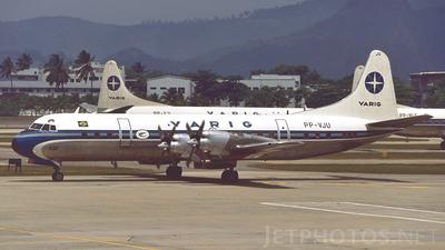 PP-VJU - Lockheed L-188A Electra - Varig