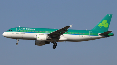 A picture of EIDVE - Airbus A320214 - Aer Lingus - © Dave Potter