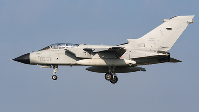 CSX7079 - Panavia Tornado ECR - Italy - Air Force