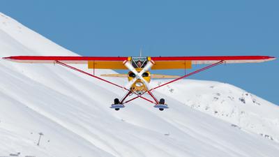 A picture of HBOLX - Piper PA18180M Super Cub - [188446] - © Luis Singer