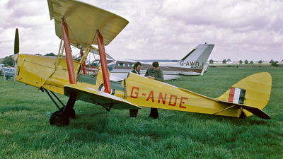 G-ANDE - De Havilland DH-82A Tiger Moth - Private