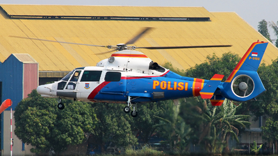 P-3102 - Eurocopter AS 365N3 Dauphin - Indonesia - Police