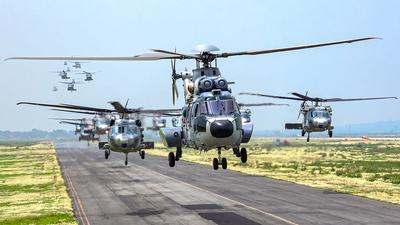 1003 - Eurocopter EC 725 Super Cougar - Mexico - Air Force