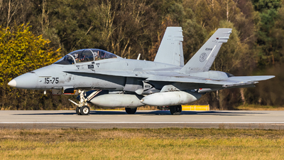 CE.15-06 - McDonnell Douglas EF-18B+ Hornet - Spain - Air Force