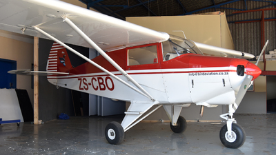 ZS-CBO - Piper PA-22-108 Colt - BIRD Aviation
