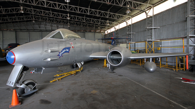A77-870 - Gloster Meteor F.8 - Australia - Royal Australian Air Force (RAAF)