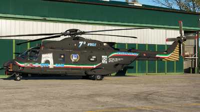 MM81557 - NH Industries NH-90TTH - Italy - Army