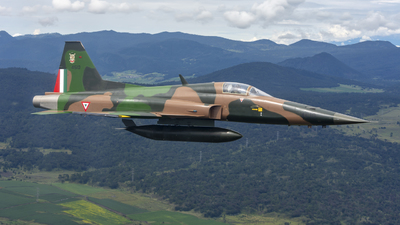 4510 - Northrop F-5E Tiger II - Mexico - Air Force