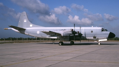 14802 - Lockheed P-3P Orion - Portugal - Air Force