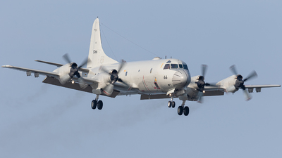 5066 - Lockheed P-3C Orion - Japan - Maritime Self Defence Force (JMSDF)