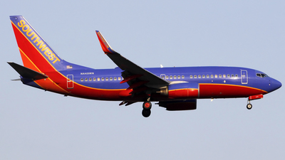 N449WN - Boeing 737-7H4 - Southwest Airlines