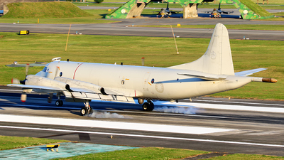 3307 - Lockheed P-3C Orion - Taiwan - Air Force