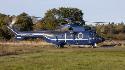 D-HEGM - Eurocopter AS 332L Super Puma - Germany - Bundespolizei