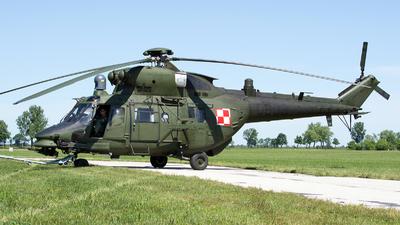 0609 - PZL-Swidnik W3PL Gluszec - Poland - Army