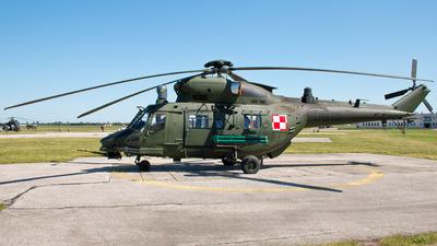 0615 - PZL-Swidnik W-3PL Sokol - Poland - Army