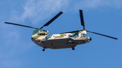 77-4497 - Kawasaki CH-47J Chinook - Japan - Air Self Defence Force (JASDF)