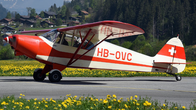 HB-OVC - Piper PA-12 Super Cruiser - Private