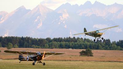 SP-MAM - Piper L-4H Cub - Private