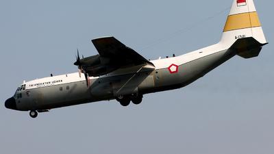 A-1341 - Lockheed C-130H-30 Hercules - Indonesia - Air Force